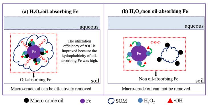 利用铁催化H2O2吸附油技术来高效氧化污染土壤中原油