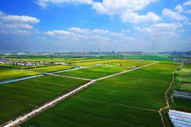 光明网:《农业农村绿色发展:乡村振兴的关键和路径》