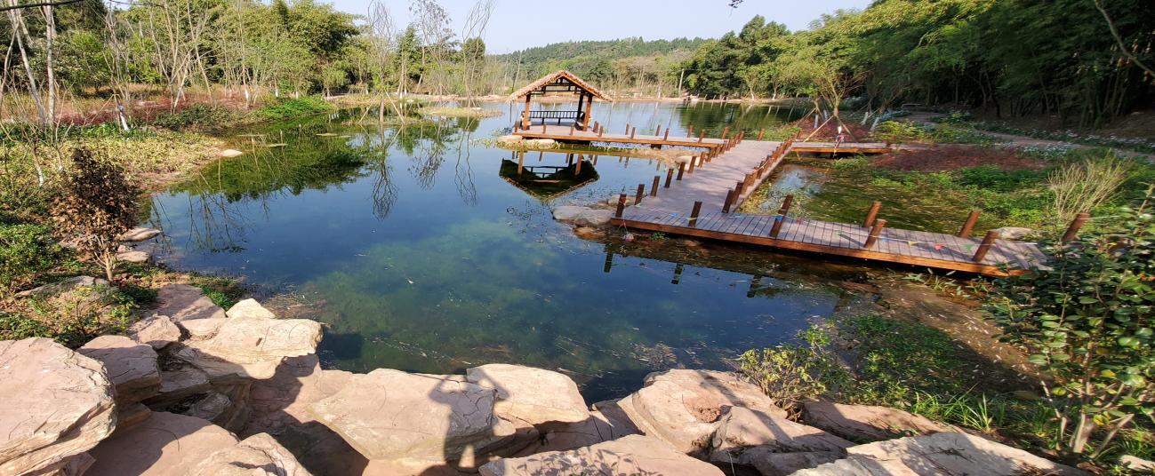 水生态环境优化治理技术
