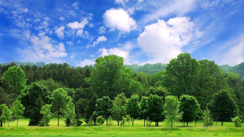 新华社 : 我国环保产业市场空间加速释放